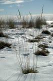 χειμώνας παραλιών στοκ φωτογραφία με δικαίωμα ελεύθερης χρήσης