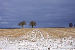 χειμώνας πεδίων Στοκ Φωτογραφία