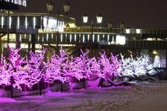 χειμώνας περπατήματος οδών ανθρώπων νύχτας τοπίων Στοκ Εικόνα