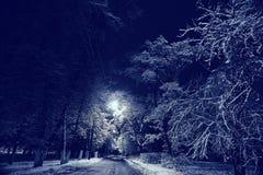 χειμώνας περπατήματος οδών ανθρώπων νύχτας τοπίων Στοκ εικόνα με δικαίωμα ελεύθερης χρήσης