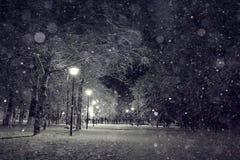 χειμώνας περπατήματος οδών ανθρώπων νύχτας τοπίων Στοκ εικόνες με δικαίωμα ελεύθερης χρήσης