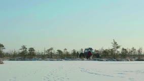Χειμώνας που ερευνά με το έλος με λάθη Καθαρή και παγωμένη ημέρα Ομαλός μετακινηθείτε τον πυροβολισμό απόθεμα βίντεο