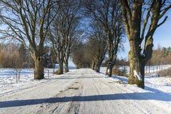 Χειμώνας, Πολωνία Στοκ Φωτογραφίες