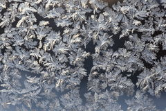 χειμώνας προτύπων Στοκ Εικόνες