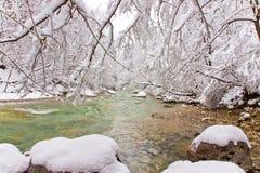 χειμώνας ρυακιών στοκ εικόνα με δικαίωμα ελεύθερης χρήσης