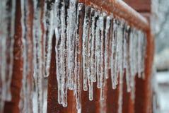Χειμώνας σαλιασμάτων Στοκ εικόνες με δικαίωμα ελεύθερης χρήσης