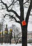 Χειμώνας σε Άγιο Πετρούπολη Στοκ εικόνα με δικαίωμα ελεύθερης χρήσης