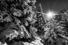 Χειμώνας σε ΑΛΑ-Archa Στοκ Εικόνες
