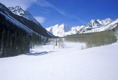 Χειμώνας σε Aspen ι στοκ φωτογραφίες