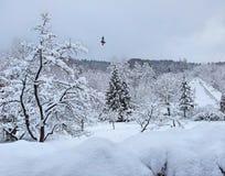 Χειμώνας σε Brasov Στοκ Εικόνες