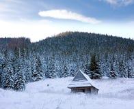 χειμώνας σκηνής βουνών Στοκ Εικόνες