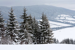 χειμώνας σκηνής βουνών Στοκ Φωτογραφία