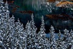 χειμώνας σκηνής λιμνών εμπ&omicro Στοκ εικόνες με δικαίωμα ελεύθερης χρήσης