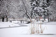 χειμώνας σκηνής πάρκων πόλε& Στοκ εικόνες με δικαίωμα ελεύθερης χρήσης