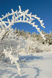 χειμώνας σκηνής της Βουλγαρίας Στοκ Εικόνα