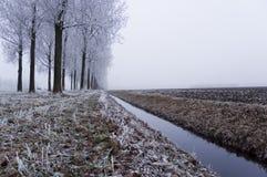 χειμώνας σκηνής Στοκ Φωτογραφία