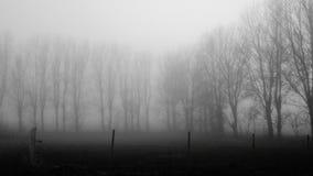 χειμώνας σκοτεινής μέρας Στοκ φωτογραφία με δικαίωμα ελεύθερης χρήσης