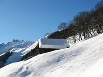 χειμώνας σπιτιών διακοπών Στοκ φωτογραφία με δικαίωμα ελεύθερης χρήσης