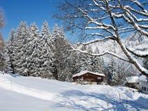 χειμώνας σπιτιών διακοπών Στοκ εικόνες με δικαίωμα ελεύθερης χρήσης