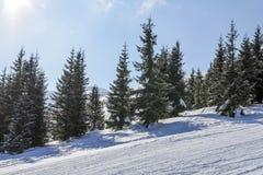 Χειμώνας στα βουνά Στοκ Φωτογραφίες