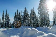 Χειμώνας στα βουνά Carpatian Ουκρανία Στοκ εικόνες με δικαίωμα ελεύθερης χρήσης
