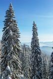 Χειμώνας στα βουνά Carpatian Στοκ φωτογραφία με δικαίωμα ελεύθερης χρήσης