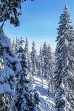 Χειμώνας στα βουνά Carpatian Στοκ εικόνα με δικαίωμα ελεύθερης χρήσης
