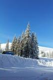 Χειμώνας στα βουνά Carpatian Στοκ εικόνες με δικαίωμα ελεύθερης χρήσης