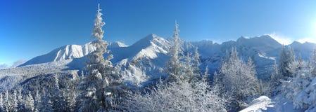 Χειμώνας στα βουνά Tatra Στοκ Εικόνα