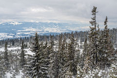 Χειμώνας στα υψηλά βουνά Tatras Στοκ εικόνα με δικαίωμα ελεύθερης χρήσης