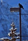 Χειμώνας στα δύσκολα βουνά Στοκ Φωτογραφία