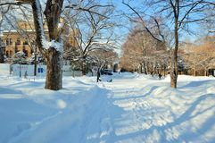 Χειμώνας στην Ιαπωνία στοκ εικόνες