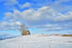 Χειμώνας στην Τρανσυλβανία Ρουμανία Στοκ Φωτογραφία