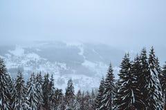Χειμώνας στις γαλλικές Άλπεις Στοκ Εικόνες