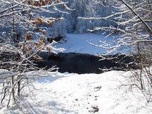 Χειμώνας στον ποταμό Στοκ Φωτογραφίες