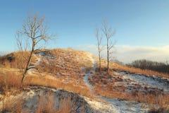 Χειμώνας στους αμμόλοφους Στοκ Φωτογραφία