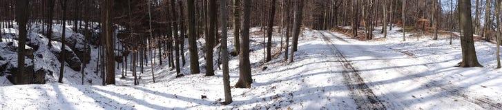 Χειμώνας στο Βοημίας παράδεισο, Τσεχία Στοκ Εικόνες