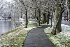 Χειμώνας στο νότιο Τζέρσεϋ - πολύ χιονώδες Στοκ Εικόνες