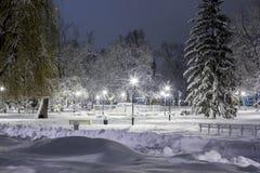 Χειμώνας στο πάρκο, χιονισμένα δέντρα, snowdrifts Στοκ Εικόνες