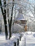 Χειμώνας στο πάρκο Kolomenskoye Στοκ φωτογραφία με δικαίωμα ελεύθερης χρήσης