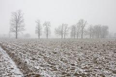 Χειμώνας στο πεδίο Στοκ φωτογραφία με δικαίωμα ελεύθερης χρήσης