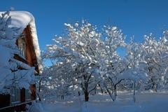 Χειμώνας στο χωριό Στοκ Εικόνες