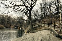 Χειμώνας στο Central Park Μανχάταν Νέα Υόρκη στοκ φωτογραφία