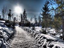 Χειμώνας 2015 Σλοβακία Tatry Vysoke Στοκ Εικόνες