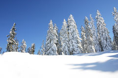 χειμώνας της Αυστρίας Στοκ φωτογραφία με δικαίωμα ελεύθερης χρήσης