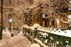 χειμώνας της Βοστώνης Στοκ φωτογραφίες με δικαίωμα ελεύθερης χρήσης