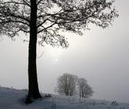 χειμώνας της Δανίας Στοκ Εικόνες