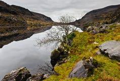 χειμώνας της Ιρλανδίας Στοκ εικόνες με δικαίωμα ελεύθερης χρήσης