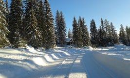 χειμώνας της Νορβηγίας Στοκ φωτογραφία με δικαίωμα ελεύθερης χρήσης