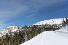 χειμώνας της οδικής Ρωσίας βουνών βουνών Καύκασου Στοκ φωτογραφία με δικαίωμα ελεύθερης χρήσης